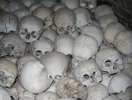 skull skull and crossbones mortal