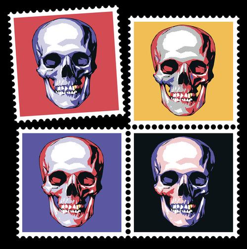 skull  bone  skeleton