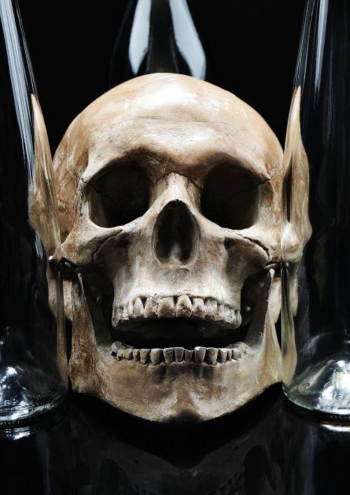 skull glass teeth