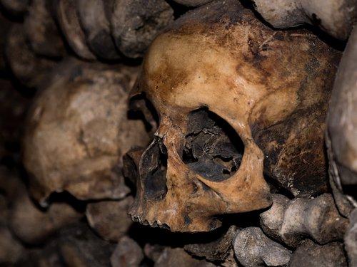 skull and crossbones  catacombs  horror