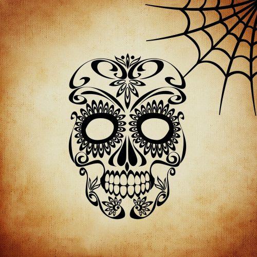skull and crossbones cobweb background