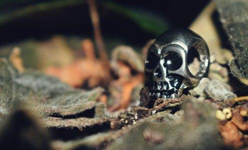 skull metal  skull  rock