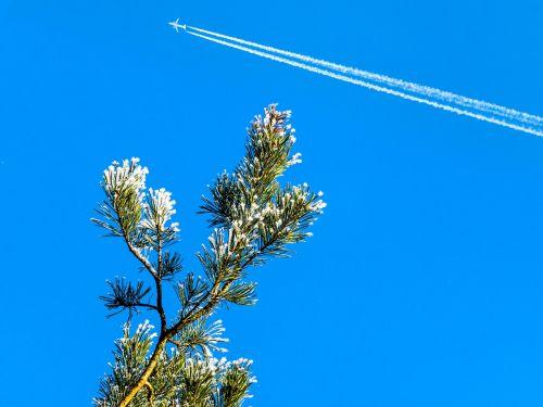 sky blue winter