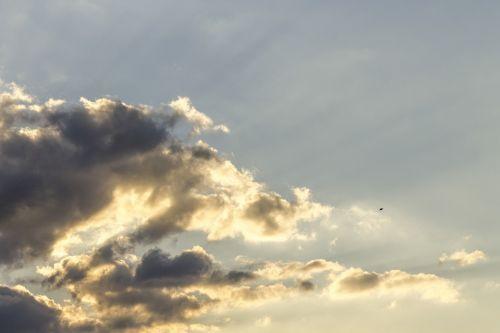 sky kite sunset