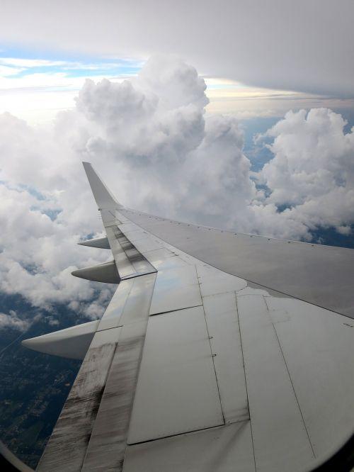 sky fly plane
