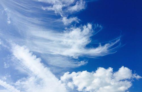dangus,debesis,mėlynas,debesys formos,priekinė detalė,saulėlydis,skrydis,skristi,plunksna,cirrus,cumulus