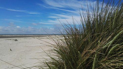 sky beach blue sky