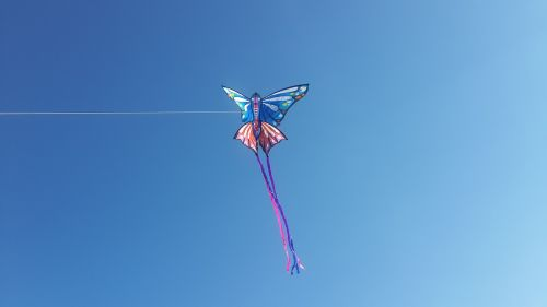 sky snakes flight