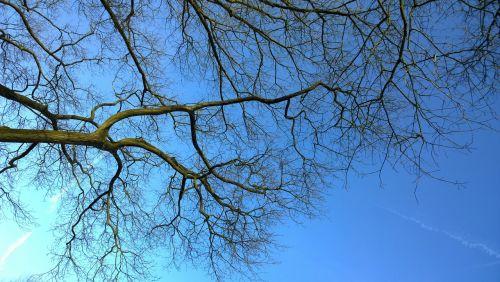 sky blue aesthetic