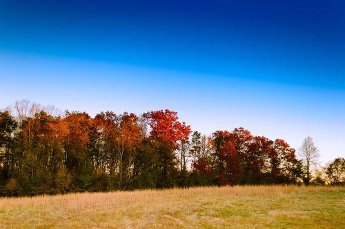 sky landscape autumn