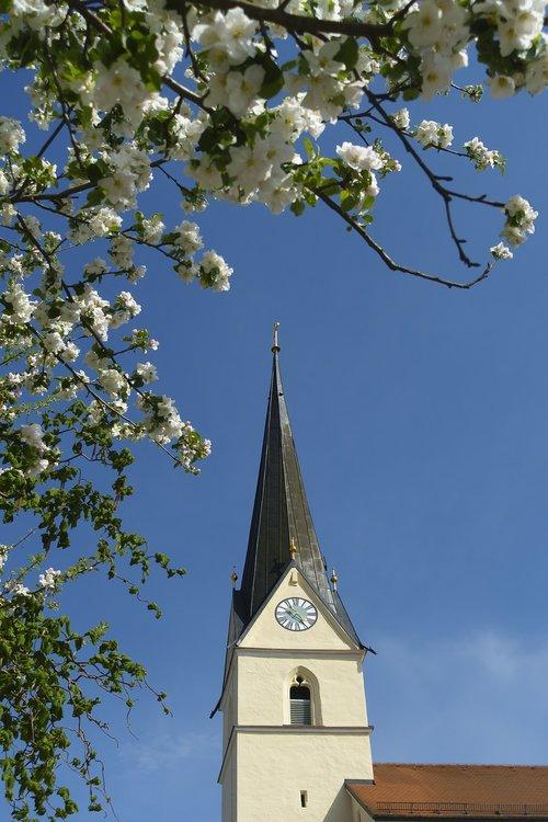 sky  tree  church