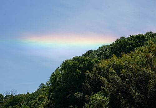sky rainbow during the day