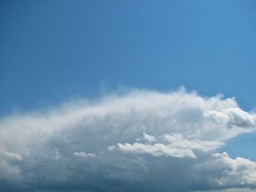 dangus,debesys,cumulus,vasara,spalva,mėlynas,struktūra