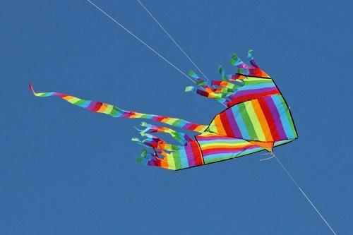 sky  dragons  flying kites