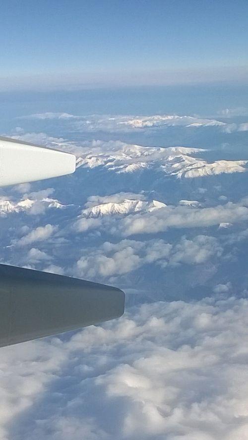 sky blue aeroplane