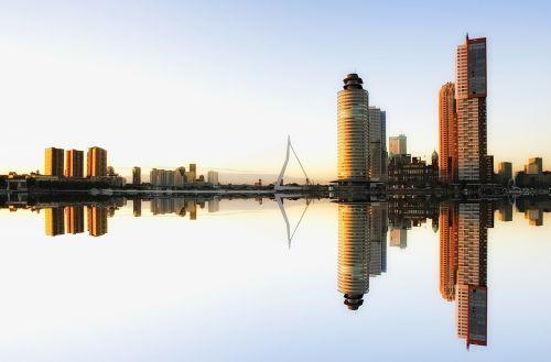 skyline rotterdam architecture