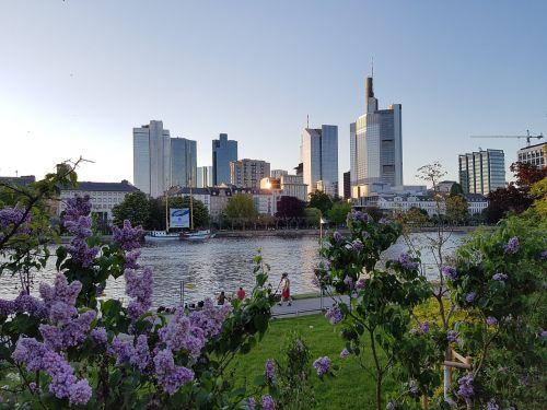skyline frankfurt main sky