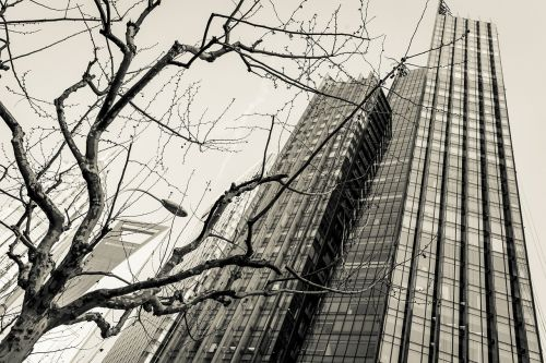 skyscrapers architecture business