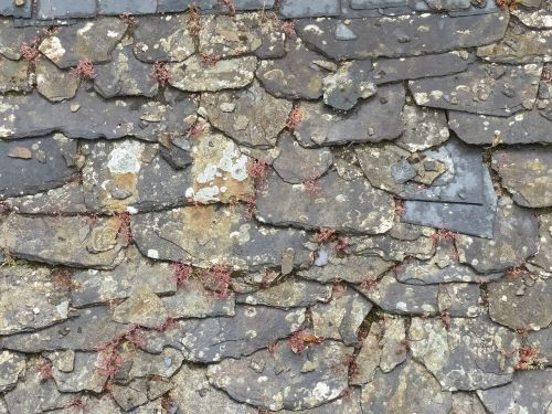slate roof tiles roof