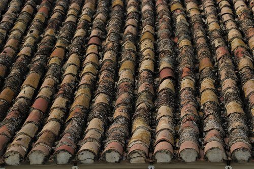 slate  roof  architecture