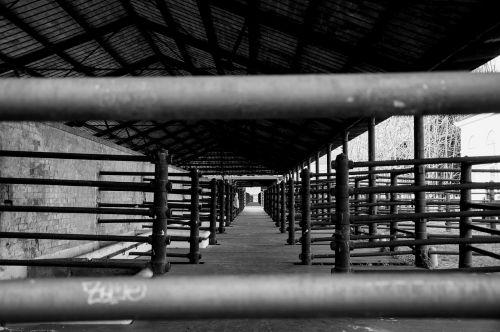 skerdyklos,juoda ir balta,dienų praeityje,barai,koridorius
