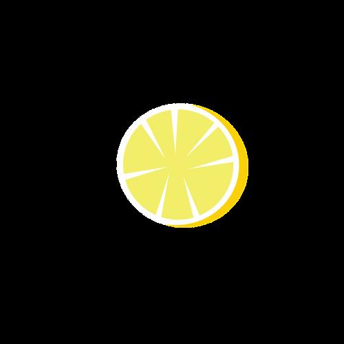 slice slice of lemon lemon