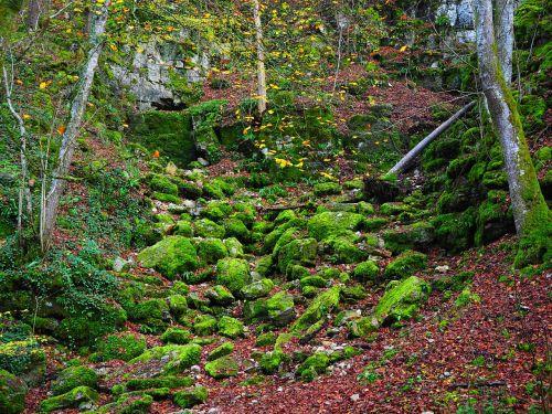 slope waldhang stones