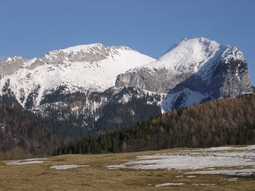 slovakia mountains trees