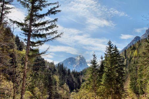 slovenia landscape loneliness