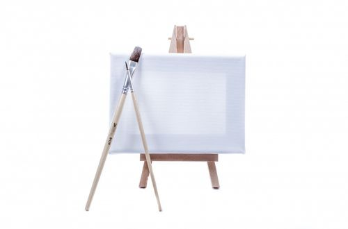 Small Canvas On White