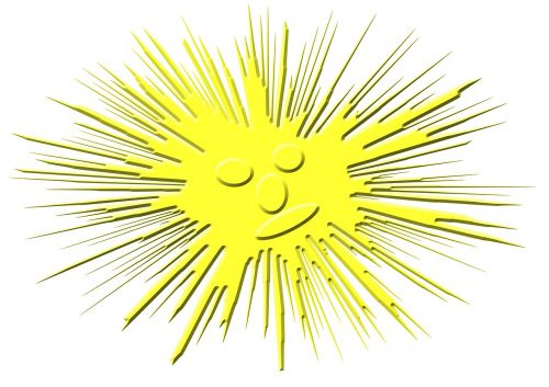 smilie sun emoticon