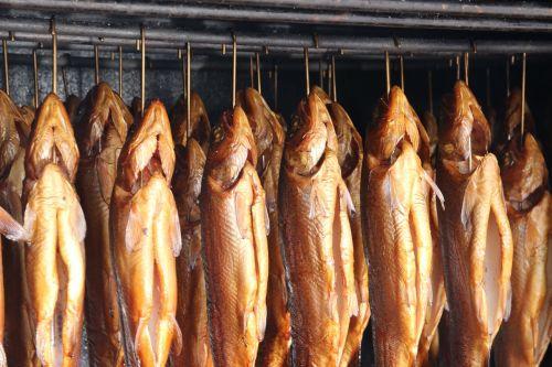 smoked fish trout smoking