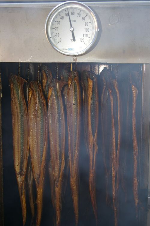 smoking oven smoked fish smoking