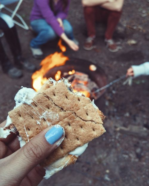s'more food snack