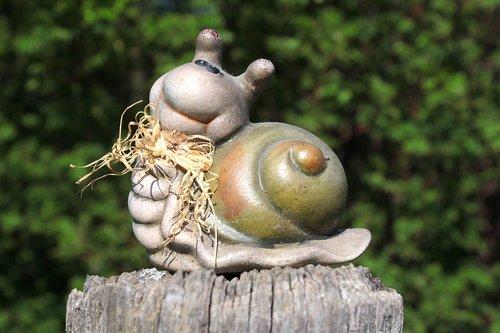 snail  dreamy  casing