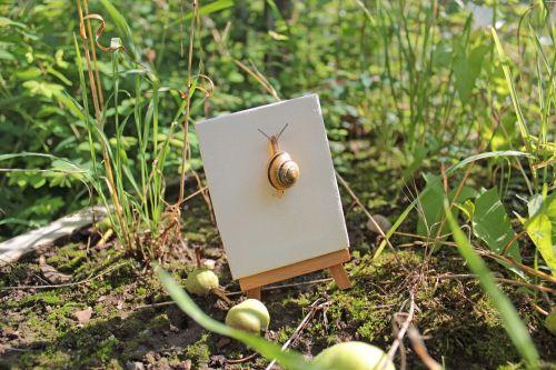 snail meadow green