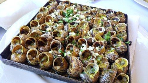 snails  snail  recipe
