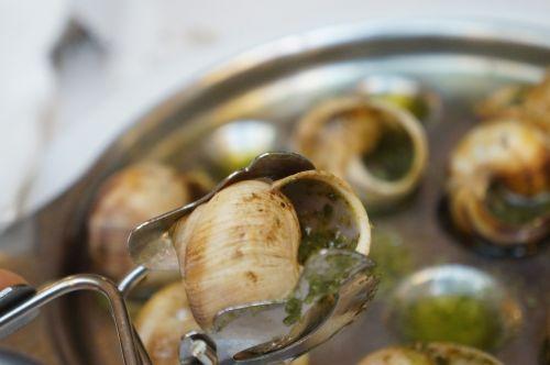 snails paris eseukkareugo
