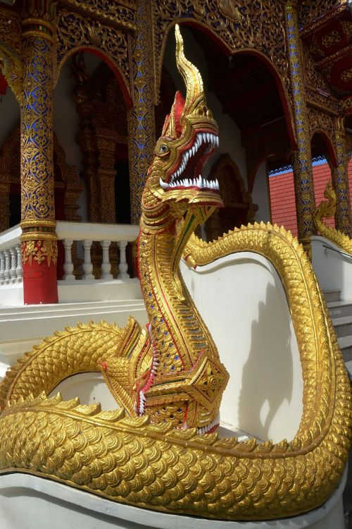 snake dragon temple