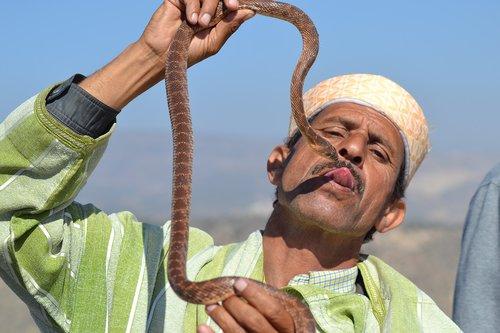 snake  trainer  morocco