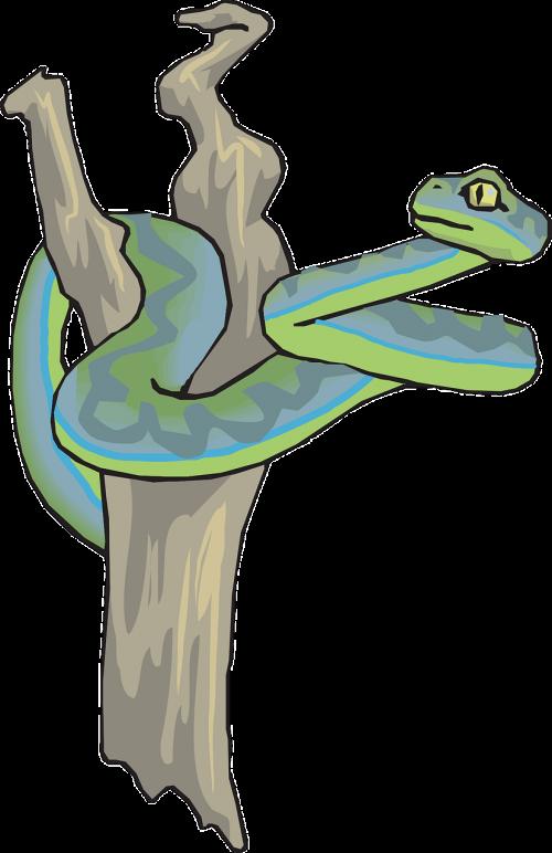 snake dead tree