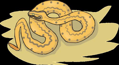 snake sand desert
