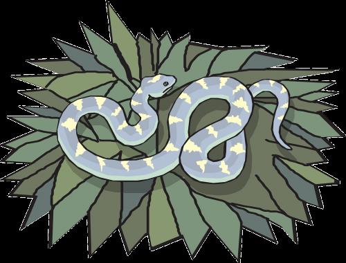 snake leaves reptile