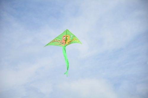snakes  air  flight