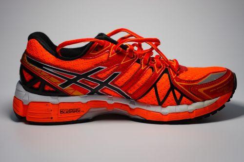 sneaker running shoe shoe
