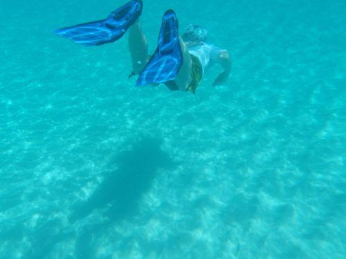 snorkel swim diver