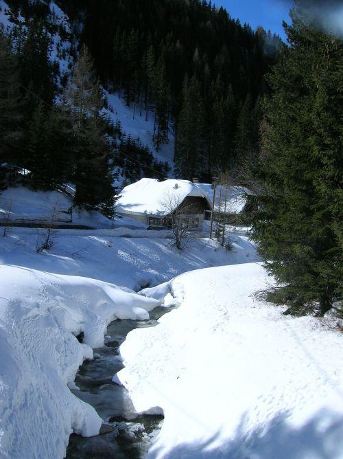 snow frost winter