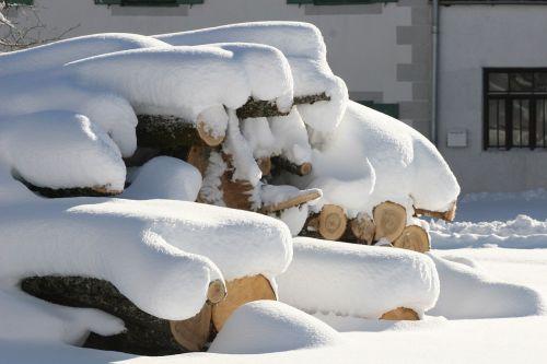 snow wood winter