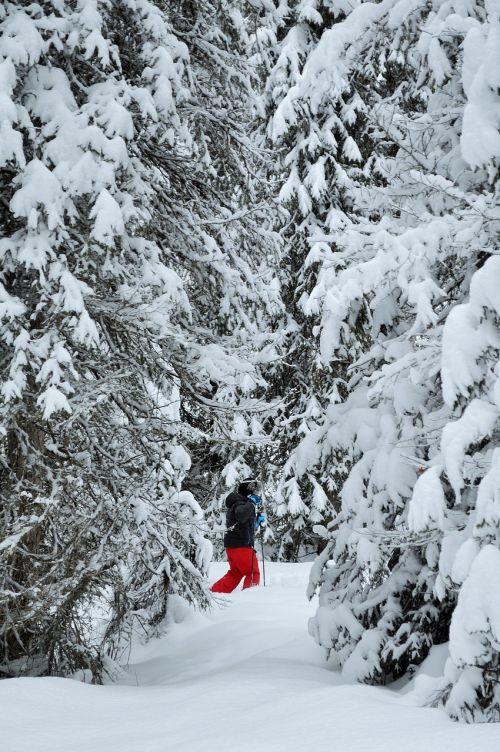 snow alps haute-savoie