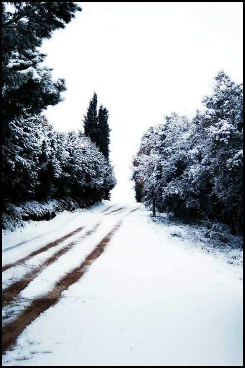 snow nevada snowy road